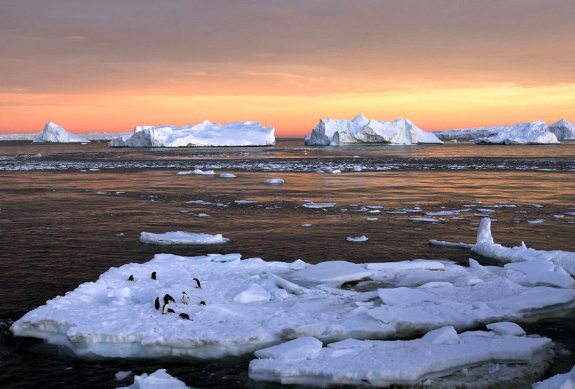 дизайнера юлию картинки арктических заповедников судя последним