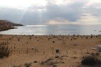 Пляж Голден бич. Мальта. Начало ноября.