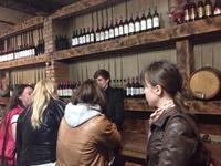 Дегустационный зал Гудаутского винзавода