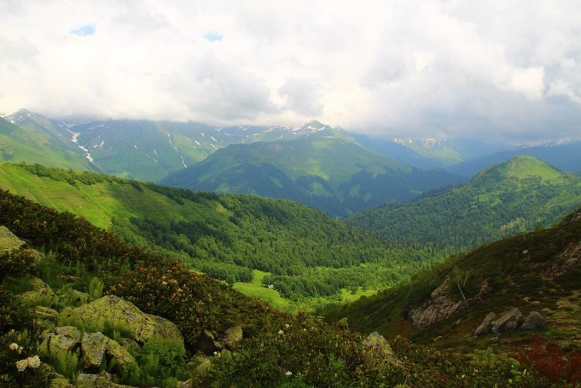 Склоны гор Абхазии