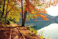 Осенний берег озера Рица, Абхазия