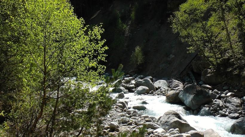 Природа Абхазии в июне