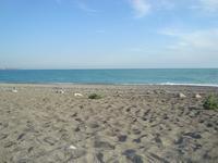 Май на пляже в Гагре