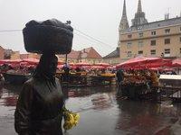 Ноябрь на рынке Долац, Загреб
