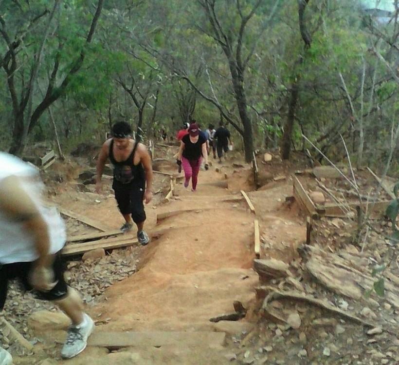 Апрельские хождения по венесуэльским паркам.