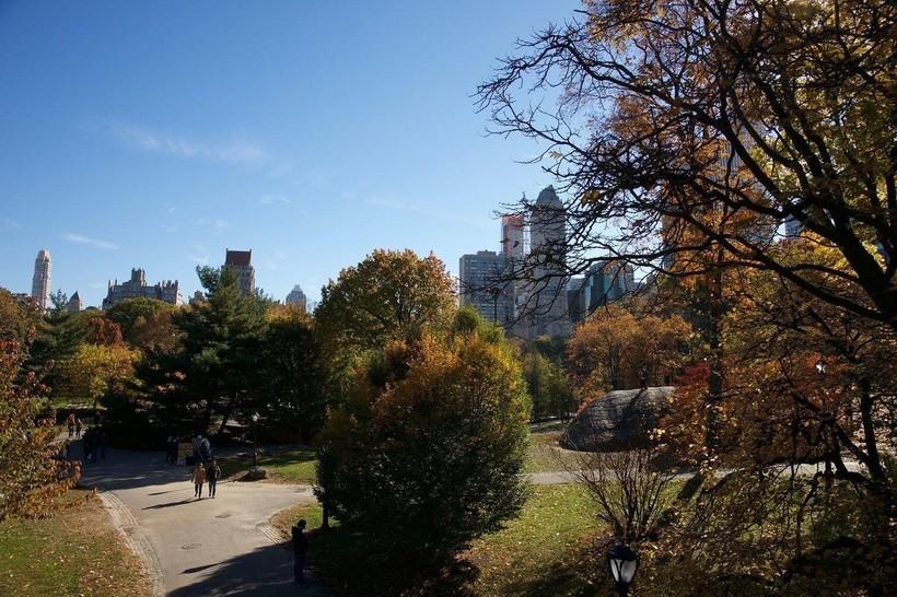 Октябрь в Центральном парке Нью-Йорка