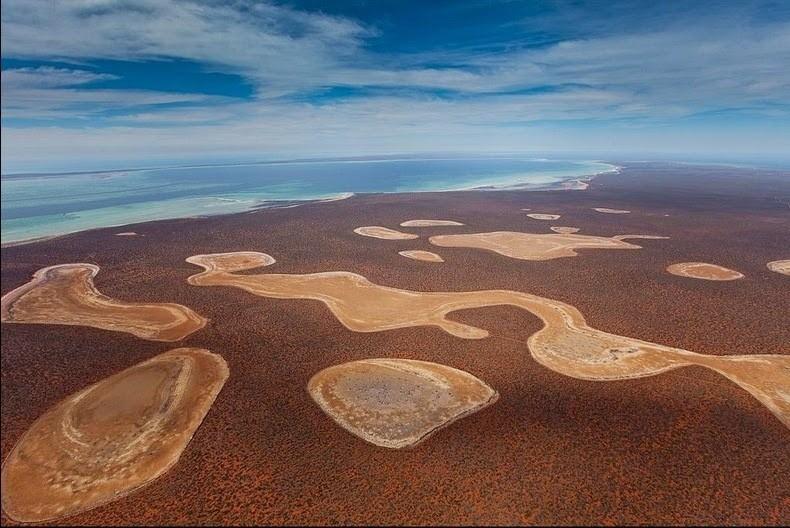 Бирридас: уникальные гипсовые озера Австралии, куда летят на зимовку птицы из Сибири