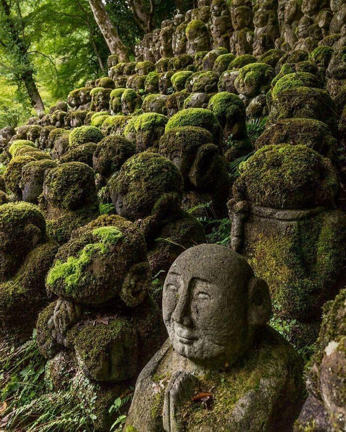 15 великолепных фото о победе природы над цивилизацией
