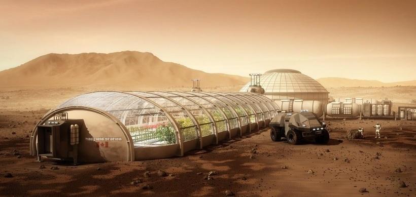 Ученые протестировали, какие виды растений смогут прижиться в марсианском грунте