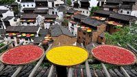 10 фото о том, насколько живописно выглядит сушка овощей и специй в китайских деревнях