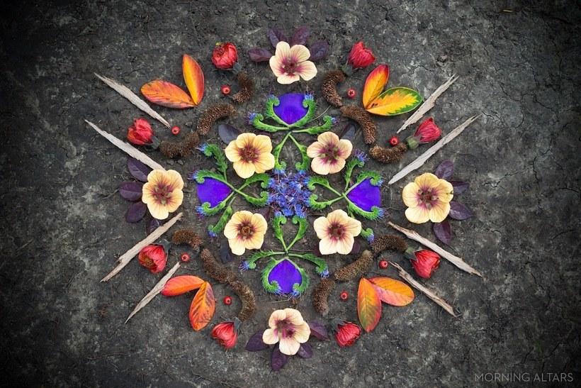 Художник создает красивейшие «утренние алтари» из элементов природы
