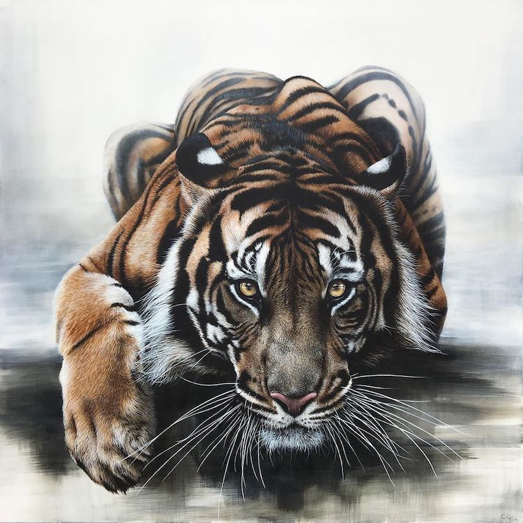 Гиперреалистичные картины маслом, посвященные неистовой красоте дикой природы