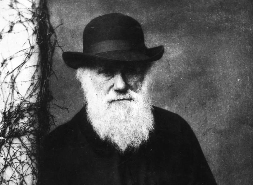 Теория Дарвина до сих пор вызывает горячие споры