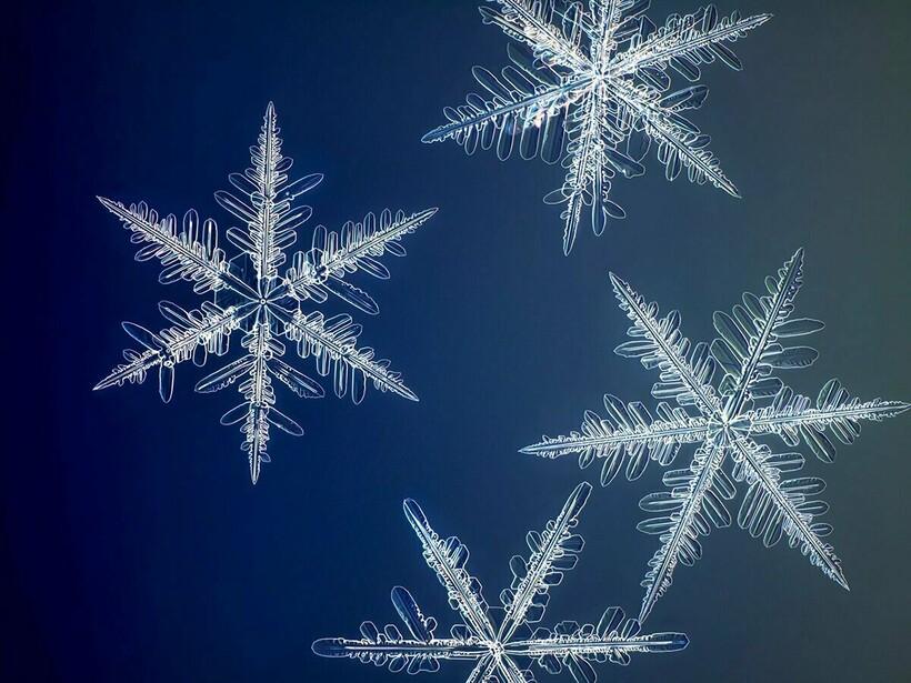 Каждая снежинка имеет свою уникальную структуру