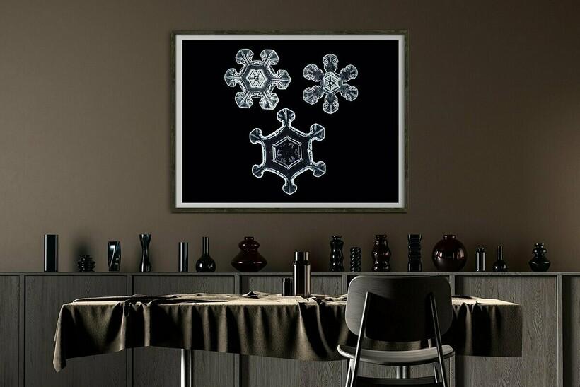 Макрофото снежинок позволяет посмотреть на воду иначе