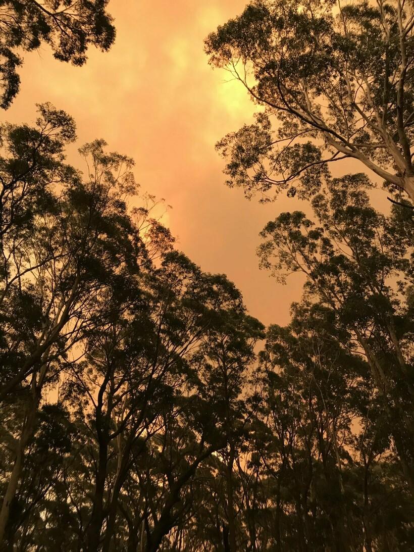 Красное от огня небо возле дома австралийца