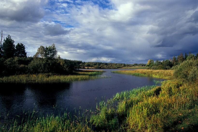Западная Двина в Андеаполе
