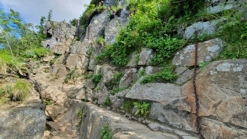 Восхождение на Бабью гору по тропе «Перч Академикув»