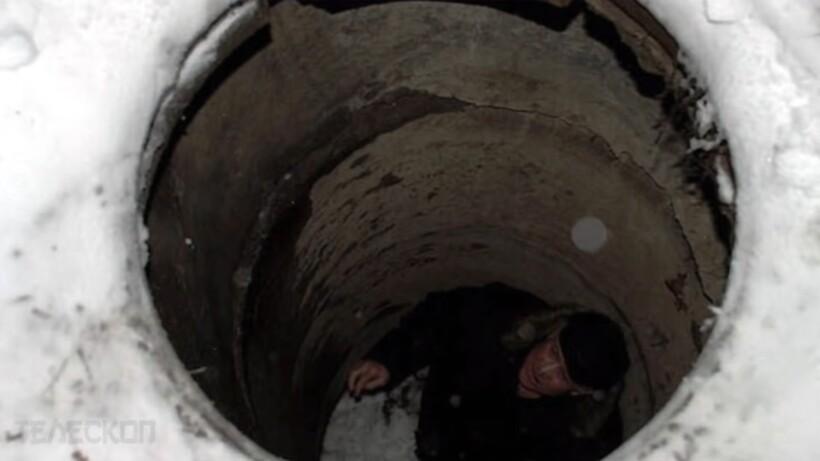 Видео: Мужчина вылечил рысь, а спустя один год она спасла ему жизнь