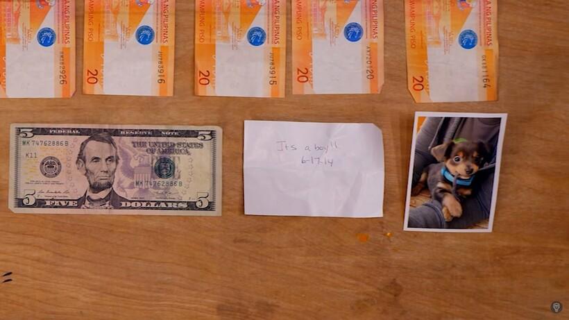 Парень «потерял» 200 кошельков, чтобы проверить, есть ли в Америке честные люди