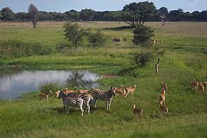 Парк Mukuvisi Woodlands