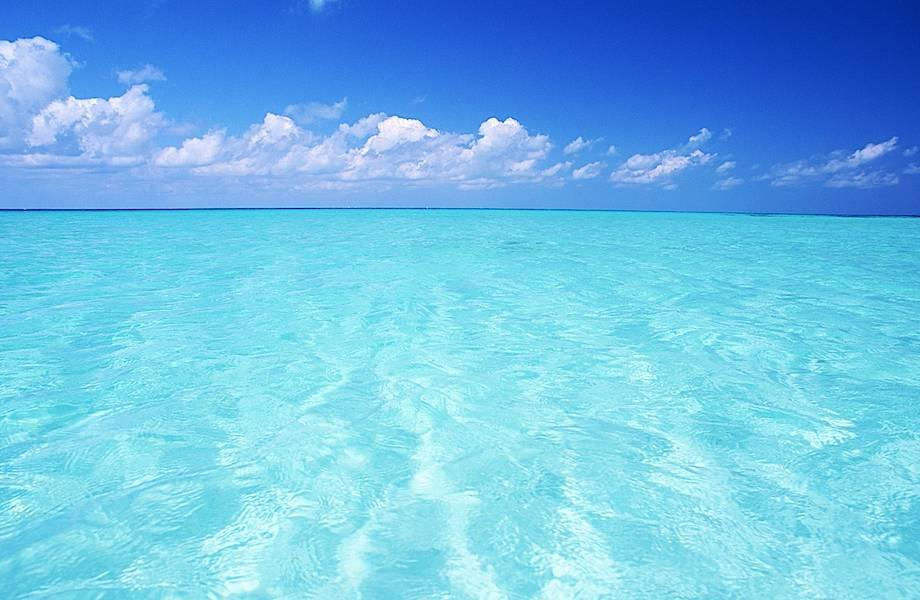 5 научных фактов, доказывающих, что море делает нас счастливыми