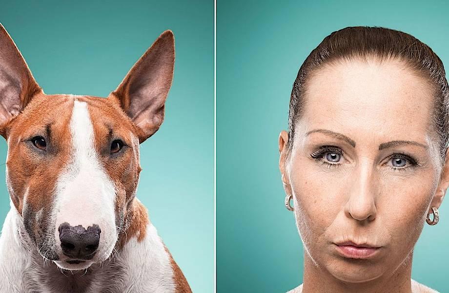 Это не случайно: почему собаки так похожи на своих хозяев