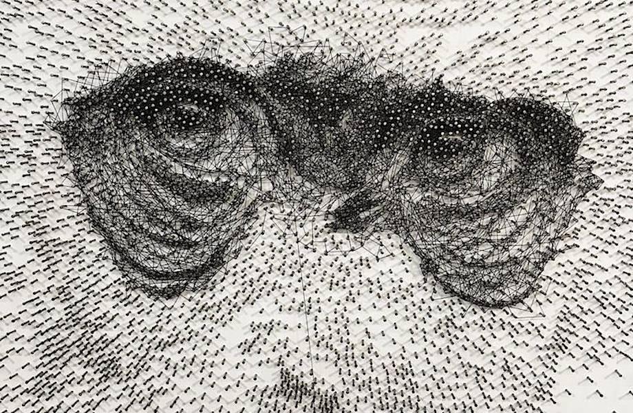 Невероятные портреты, сделанные с помощью нити и тысяч гвоздей
