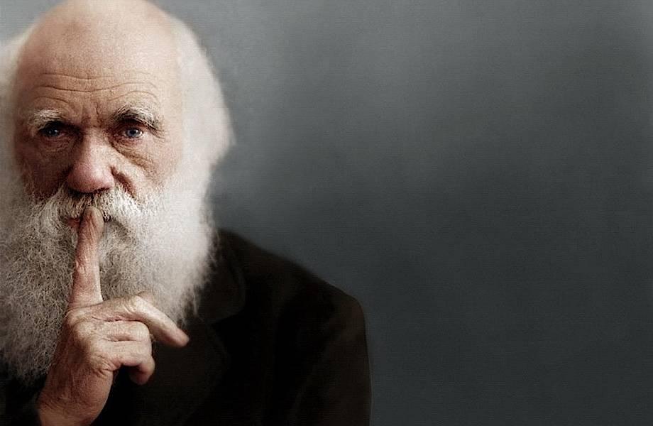Почему Дарвин не был атеистом и чем вдохновил Гитлера