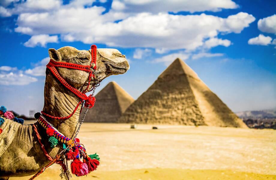 Туры в Египет от 28 700 ₽