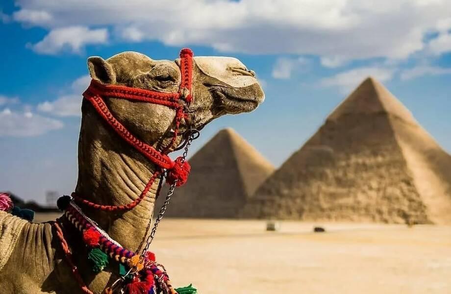 Туры в Египет от 17 300 руб